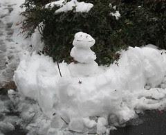 Snow Guardian by Teckelcar