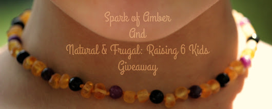Giveaway/Review: Spark of Amber- Raw Baltic Amber, Black Tourmaline, Lepidolite Necklace