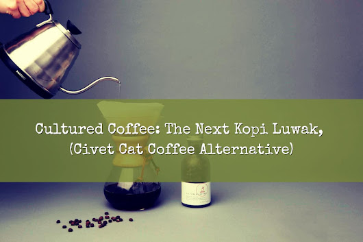 Cultured Coffee: The Next Kopi Luwak, Civet Coffee Alternative