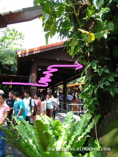 queue at sentosa 3