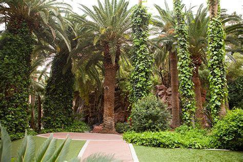 Las Vegas LGBT Weddings   Garden Wedding Chapels at the