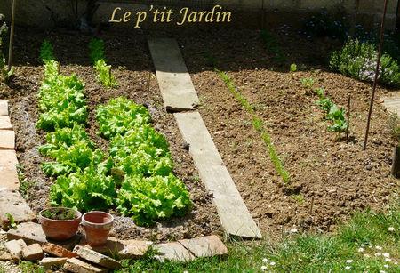 le_p_tit_jardin