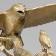 Hawk and Nightgale