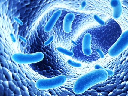 Maintaining levels of specific gut bacteria: a strategy to help prevent diarrhea