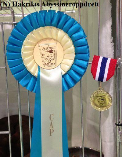 CAP-sløyfen og NOM-medaljen som Estilo fikk :)