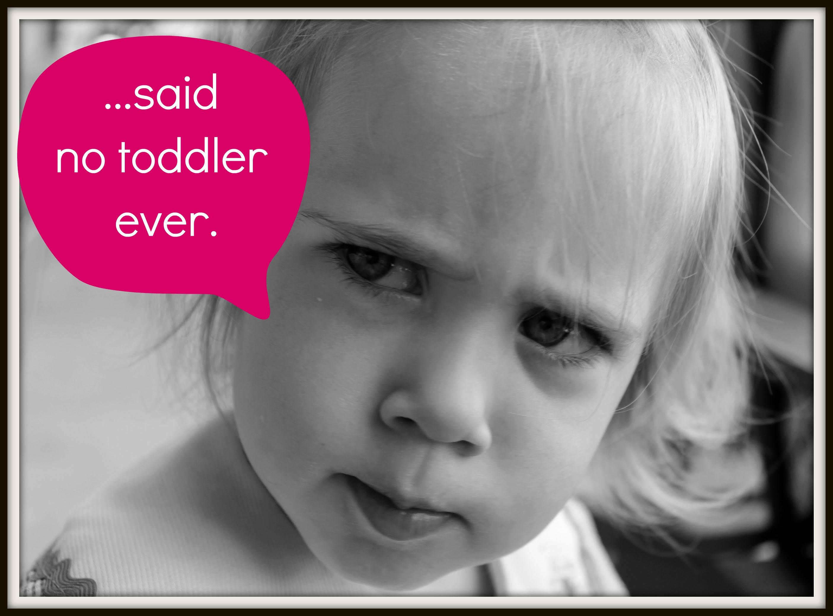 Funny Toddler Memes