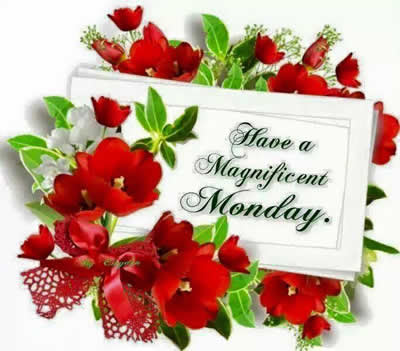 Good Morning Wishing U All A Happy Monday Daily Inspirations For