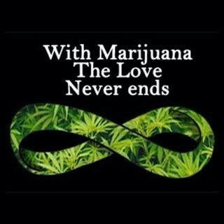 Stoner Quotes Stoner Sayings Stoner Picture Quotes