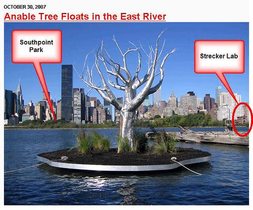 Anable Tree