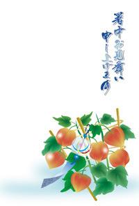 鬼灯ほおずき夏の風物詩 ビジネス向け暑中見舞いテンプレート 2013年