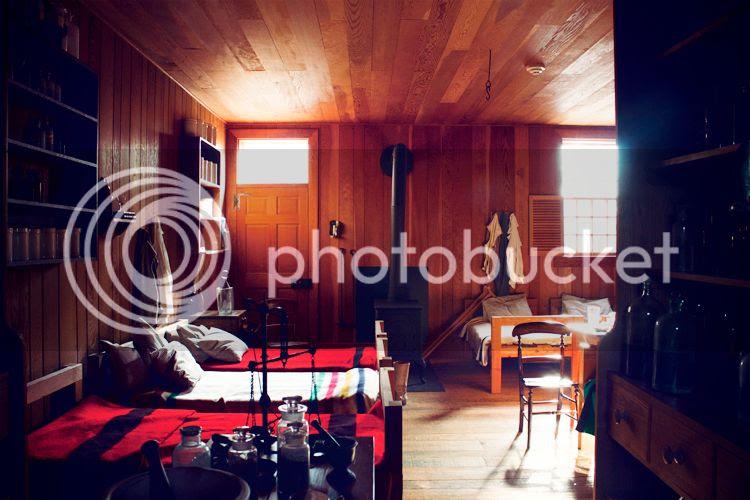 photo NovLisa029_zpsafbbd686.jpg