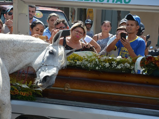 Levado para o cortejo pelo irmão do vaqueiro, cavalo relinchava, batia as patas e deitou a cabeça sobre o caixão do dono (Foto: Kyioshi Abreu/ Arquivo Pessoal)