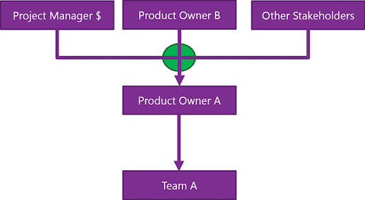 Does your organisation have both Project Mangers as well as Product Owners? - naked ALM - Experts in ALM, TFS & lean-agile with Scrum