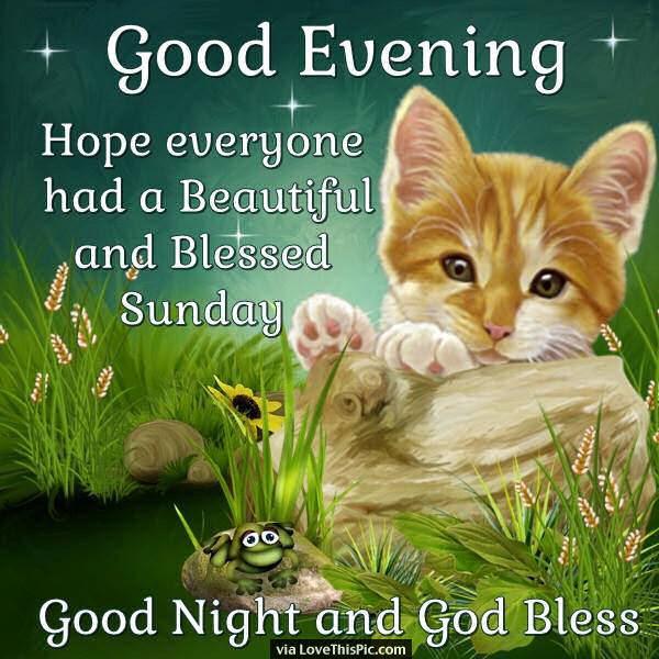 Good Evening Hope Everyone Has A Beautiful Sunday Pictures Photos