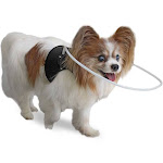 Blind Dog Halo Harness/Vest for Pets Under 30 lbs