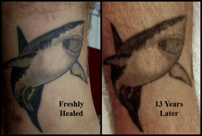For Those Curious About Fading 13 Years Of Aging On My First Tattoo