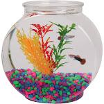 Tom Aquatics Plastic Goldfish Bowl - Drum - 0.5 gal