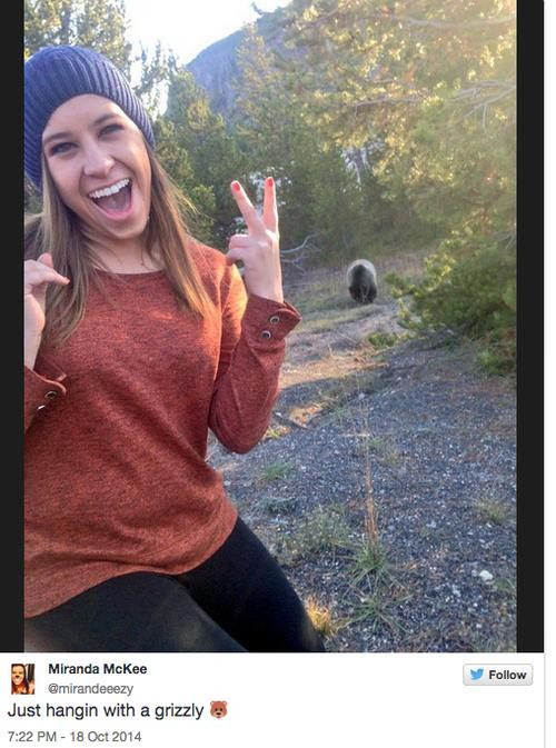 Tahoe Officials Banning Bear Selfies, Rightly So