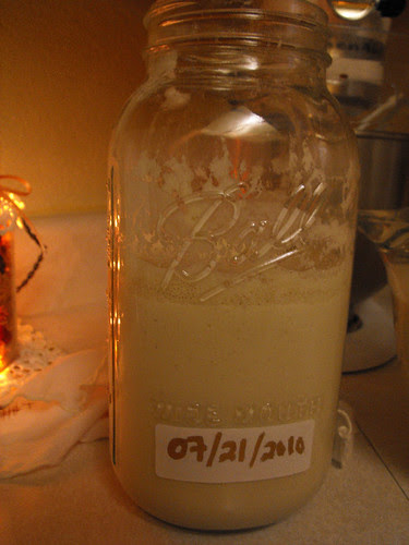 Sourdough Starter Day 2