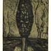 Between earth and sky12,(1-5),複合媒材,16×22cm,1999