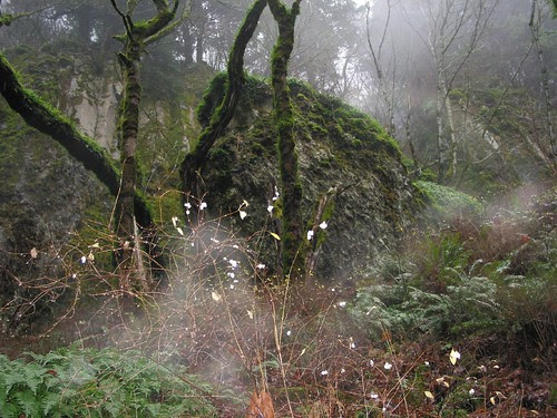 Spooky Rock in Columbia Gorge - (cc) stewickie