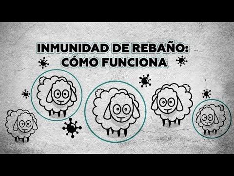 ¿Qué es la inmunidad de rebaño y cómo podría frenar la covid-19?