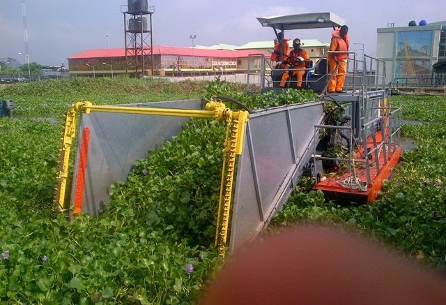 Image result for Hyacinth Takes Over Ikorodu Ferry Terminal In Lagos