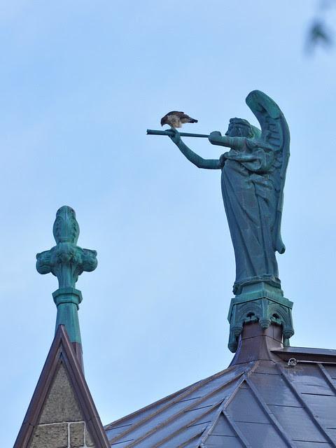 Isolde on Gabriel's Horn