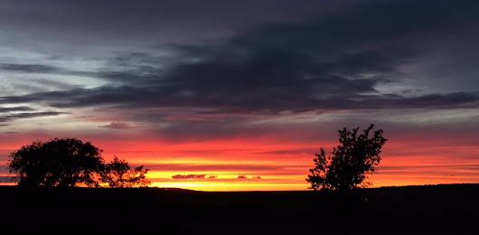 "mindy mcgregor on Twitter: ""Another day #Saskatchewan #sunset #landofthelivingskies #canada @CBCSask @Saskatchewan """