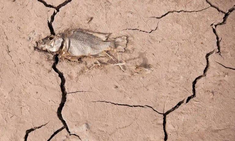 έκθεση για την αλλαγή του κλίματος τέλος του κόσμου, οι χώρες δεν λαμβάνουν τα μέτρα που απαιτούνται για την αποφυγή των χειρότερων επιπτώσεων της αλλαγής του κλίματος