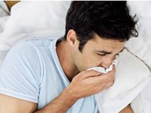 Sucesso de pesquisa com vírus da gripe em roedores não significa bons resultados em humanos, alertam pesquisadores.
