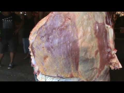 Video: It's Alive!! Meat still twitching. Caution: Not for sensitive audience. -  Compartelo!!!