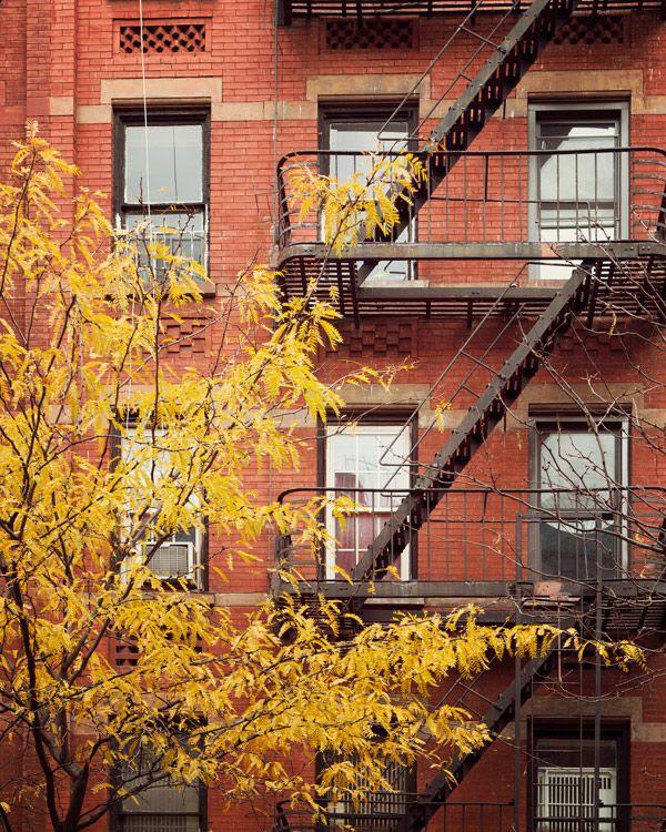 Fine Art Photography Blog Of Irene Suchocki: Autumn In New