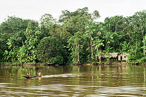 Indigenous in Amazon Rainforest.