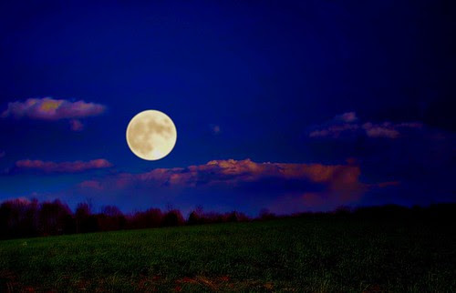 Full Moon on Winter Rye