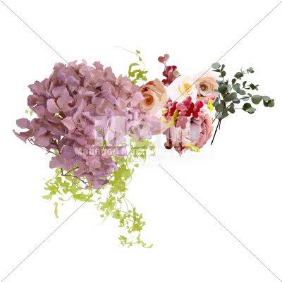 イラスト素材花 ドライフラワー ドライあじさい アンティークピンク