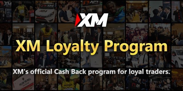 Forex Brokers Xm | Forex Trading Millionaire