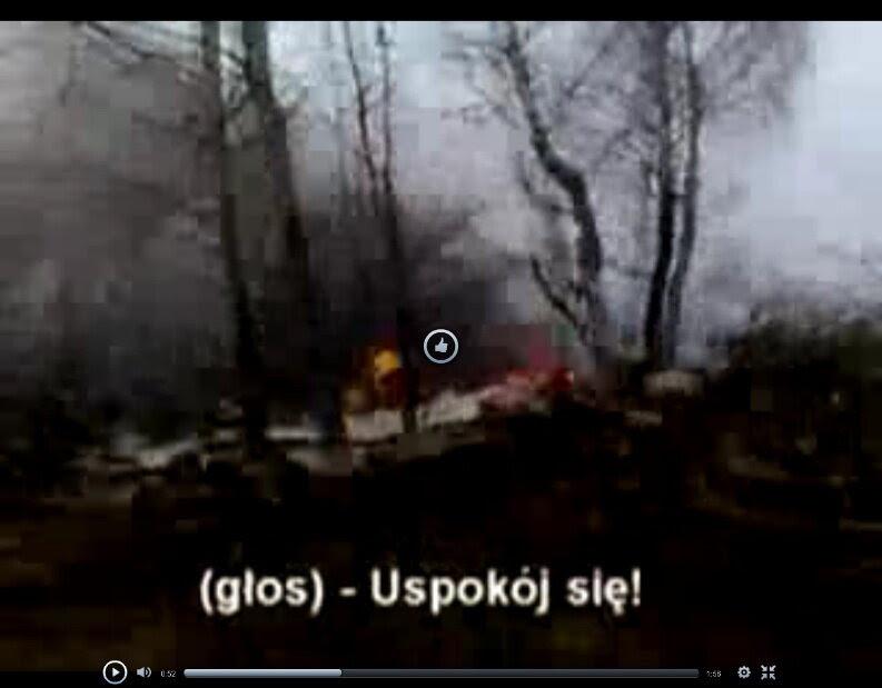 Poland calls on Russia to investigate Smolensk picture