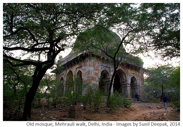 Delhi Metro Walks - Mehrauli, India - Images by Sunil Deepak, 2014