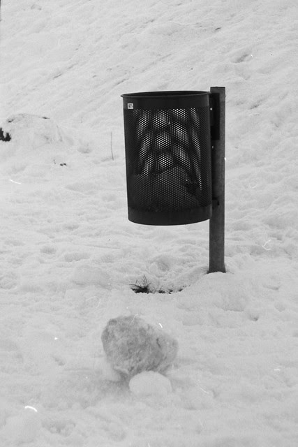 moiré in the snow