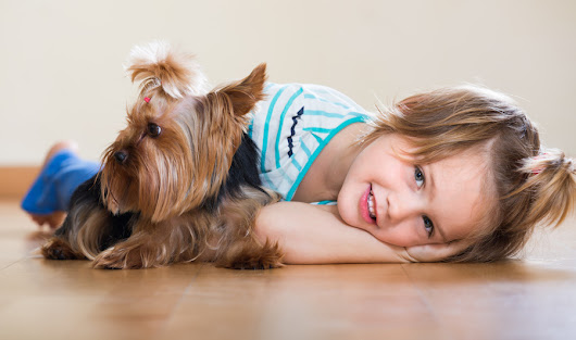 Benefits of Oak Flooring if You Have Children or Pets