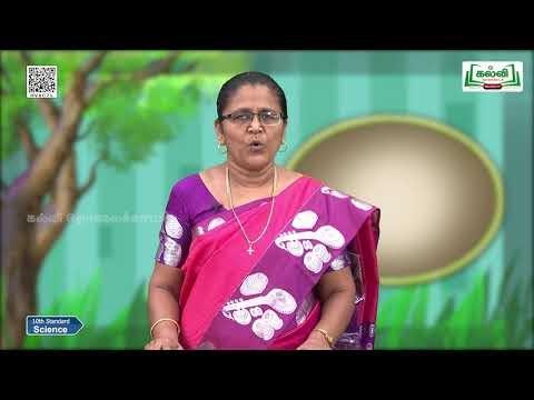 10th Science Carbon and it's Compounds Soaps and detergent Unit 11 Part 4 Kalvi TV