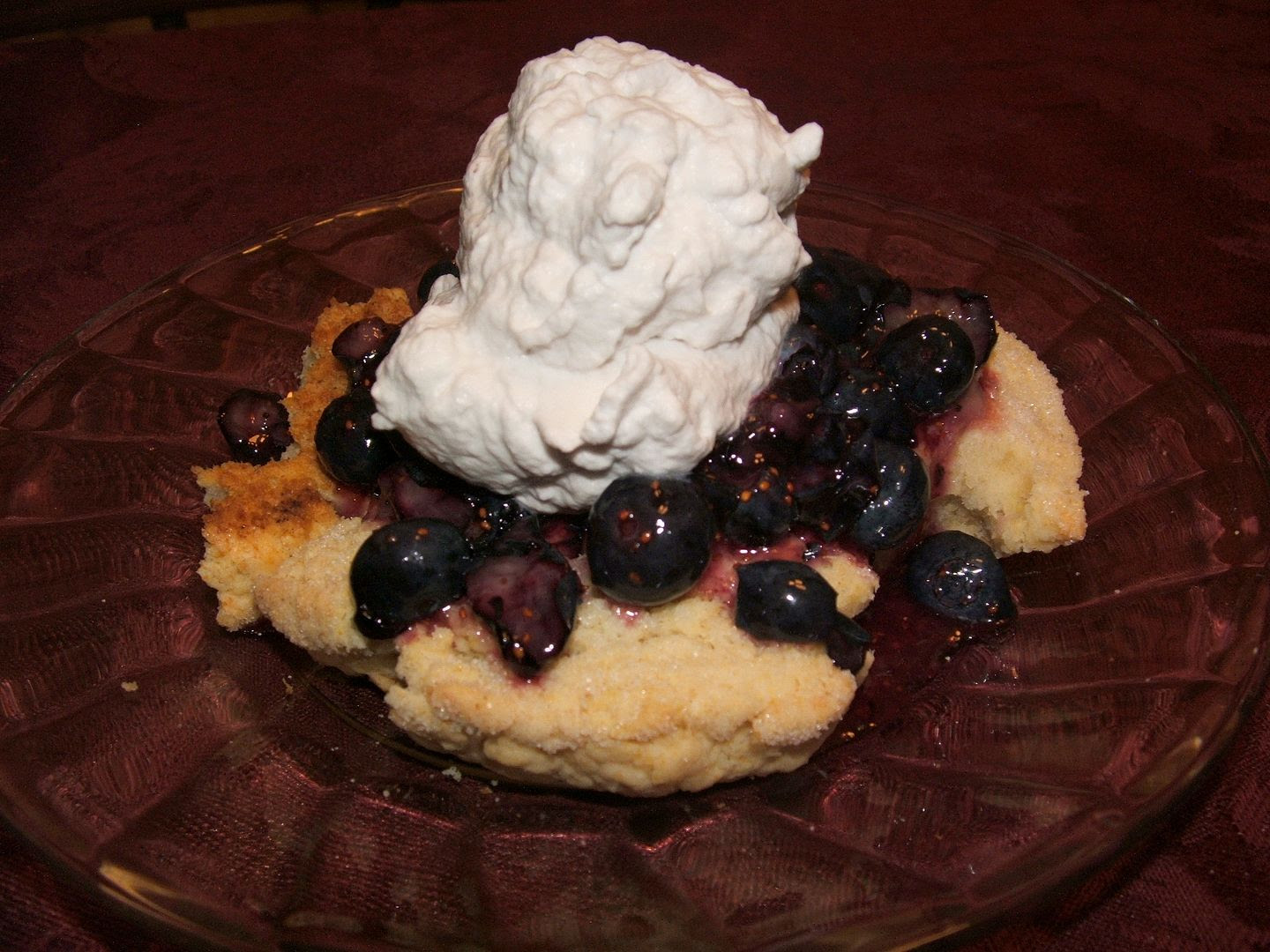 Blueberry Lemon Shortcake by Angie Ouellette-Tower for godsgrowinggarden.com photo 010_zpsaf2a94be.jpg