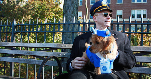 Pet and Owner Halloween Costumes | POPSUGAR Pets