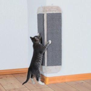 wall-scratcher