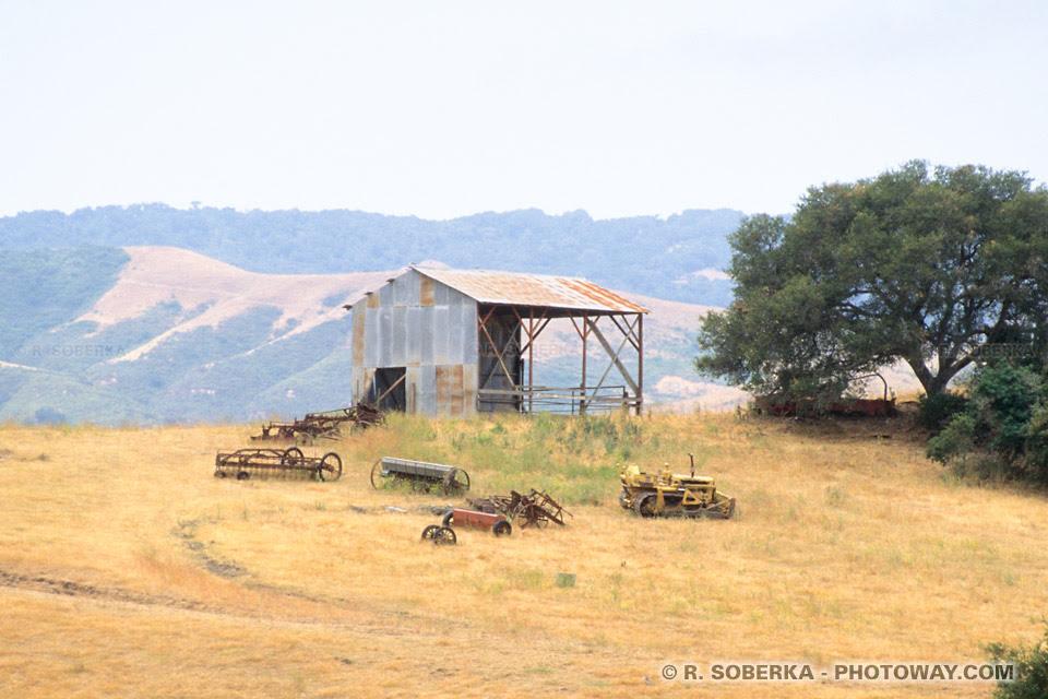 Image de l'Amérique des années 60 : Photos de ferme en Californie