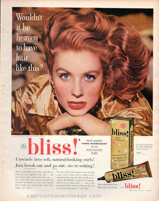 1957 Bliss Home Permanent Magazine Ad Suzy Parker Richard Avedon Mid Century Hair Retro Room Decor 1950s Vintage Advertising