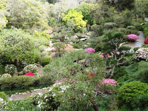 LALH Blog - UPDATE: FUTURE OF HANNAH CARTER JAPANESE GARDEN UNRESOLVED