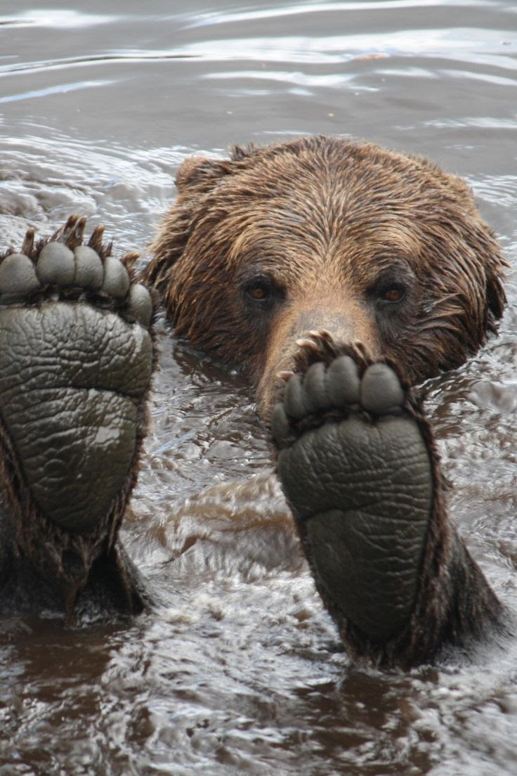 ohh feets