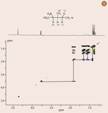 Fig 1  The 1H-1H COSY spectrum of the amonio acid isoleucine
